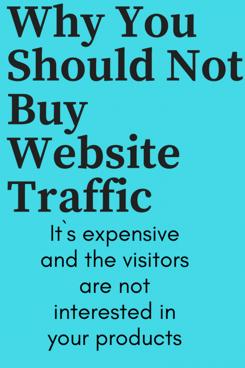 why buy website traffic?