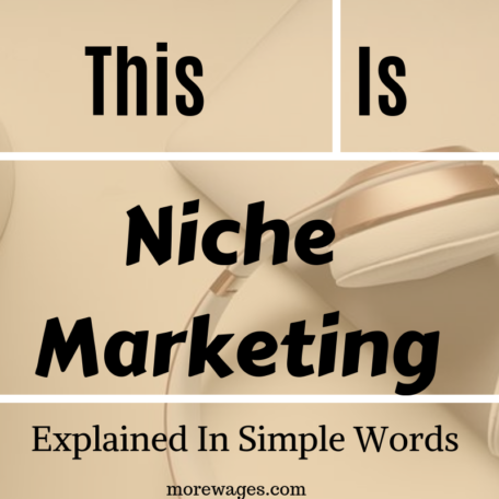 What is niche marketing about? First you need to understand what a niche is before you can move on to niche marketing and this post will explain in simple easy to understand what a niche is.